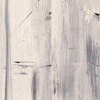 Blonde Gesso Wood