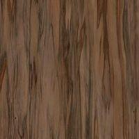 Fawn Eucalyptus