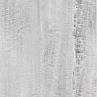 Silver Eucalyptus