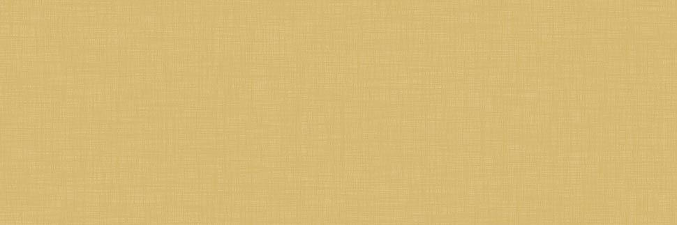 Pale Brass Y0376 Laminate Countertops