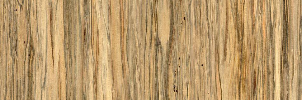Raw Eucalyptus Y0559 Laminate Countertops