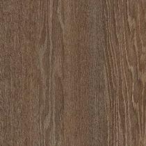 Harvard Oak