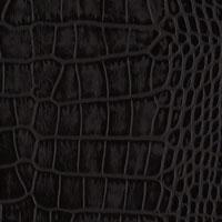 Coal Crocodile