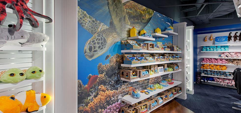 Corpus Aquarium Gift Shop | WilsonartXYou