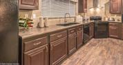 Palm Harbor Home - Bronzite Countertop